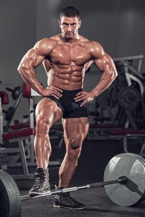 Musclé et bourré de testostérone?
