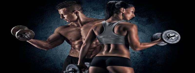 acide-d-aspartique-et-taux-de-testosterone