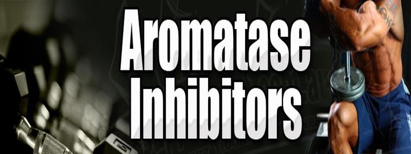 inhibiteur-d-aromatase-pour-contrer-les-effets-secondaires-de-l-acide-d-aspartique