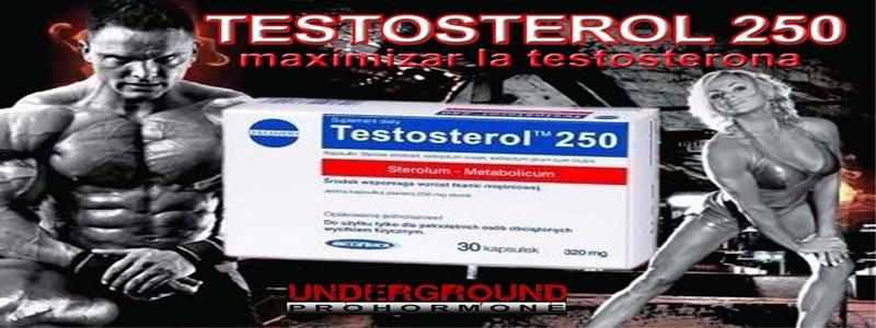acheter-megabol-testosterol-250