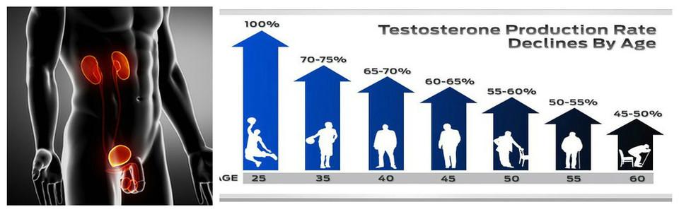 niveau-peu-eleve-de-testosterone