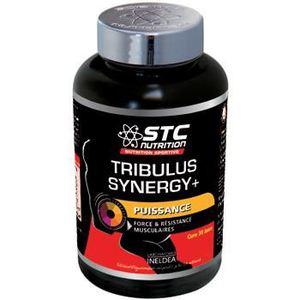 flacon-stc-nutrition-tribulus-synergy-+