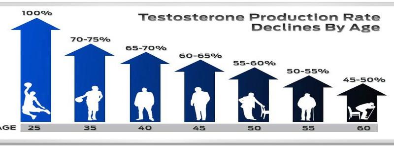 equilibre-hormonal-et-variation-du-taux-de-testosterone-chez-l-homme-a-travers-l-age