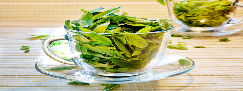 Influence-des-herbes-et-epices-sur-la-testosterone