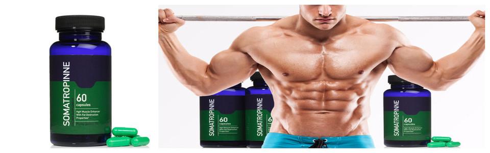 Somatropinne HGH, la formule qui fait pousser les muscles