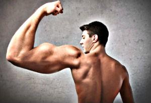 Masturbation et musculation biceps